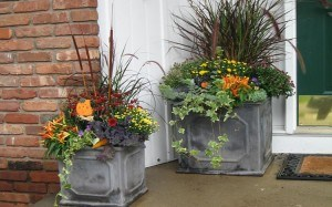 2015-8-26 Tim gardenglove fall-containers-45-300x187