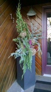 2015-11-19 winter container tall pix