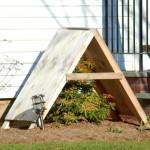 shrub shelter