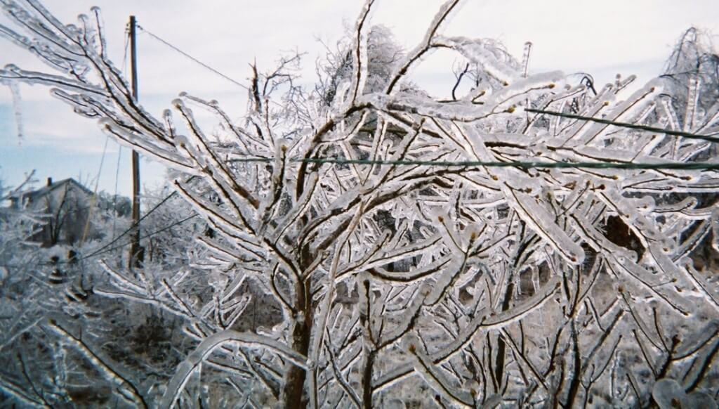 2016-1-29 ice pix for blog